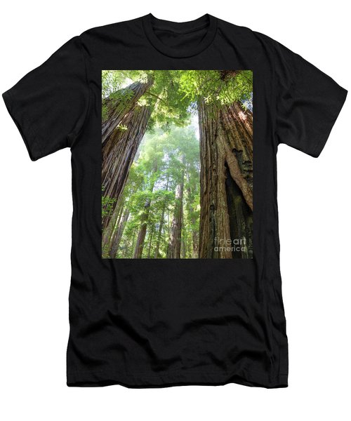 Coastal Redwoods  Men's T-Shirt (Athletic Fit)