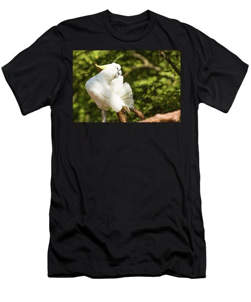 Cockatoo Preaning Men's T-Shirt (Athletic Fit)