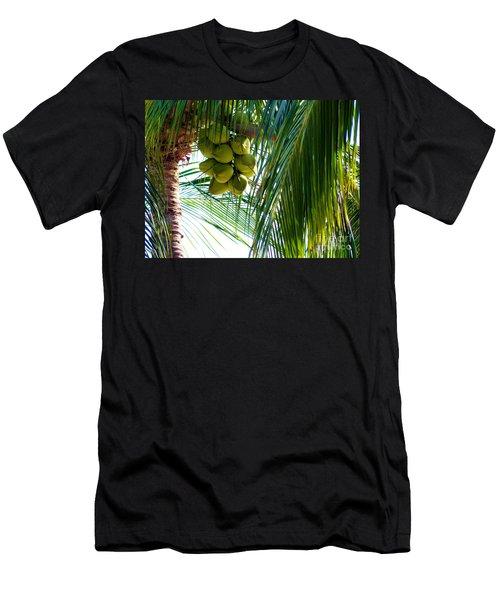 Coconuts Men's T-Shirt (Athletic Fit)