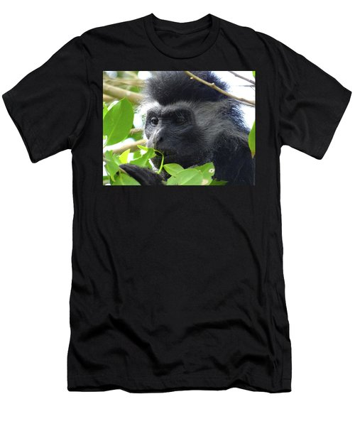 Colobus Monkey Eating Leaves In A Tree Close Up Men's T-Shirt (Athletic Fit)