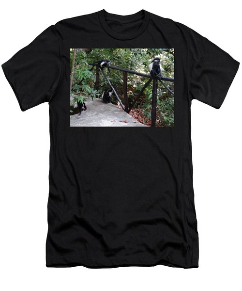 Colobus Monkeys At Sands Chale Island Men's T-Shirt (Athletic Fit)