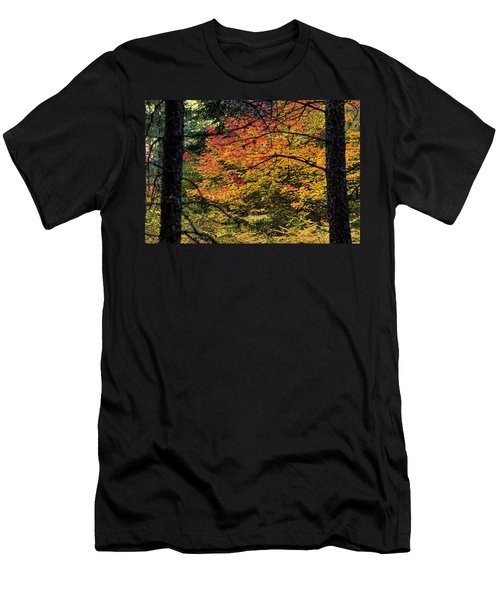 Cascade Mountain Range Fall Color Men's T-Shirt (Athletic Fit)