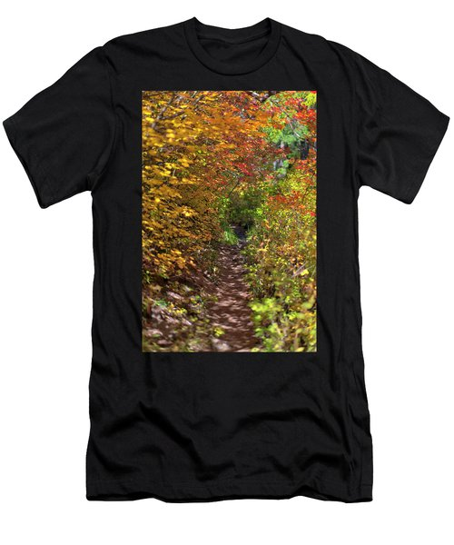 Cascade Mountain Range Color Vortex Men's T-Shirt (Athletic Fit)