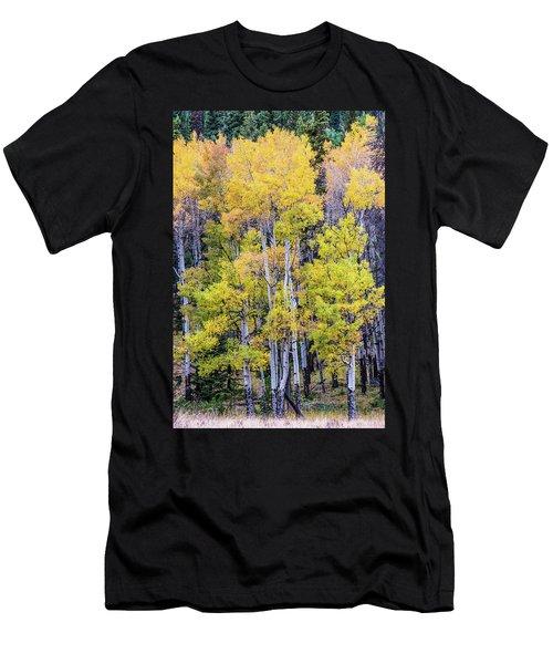 Colorado Color Men's T-Shirt (Athletic Fit)
