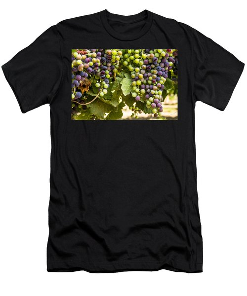 Colorful Red Wine Grape Men's T-Shirt (Athletic Fit)