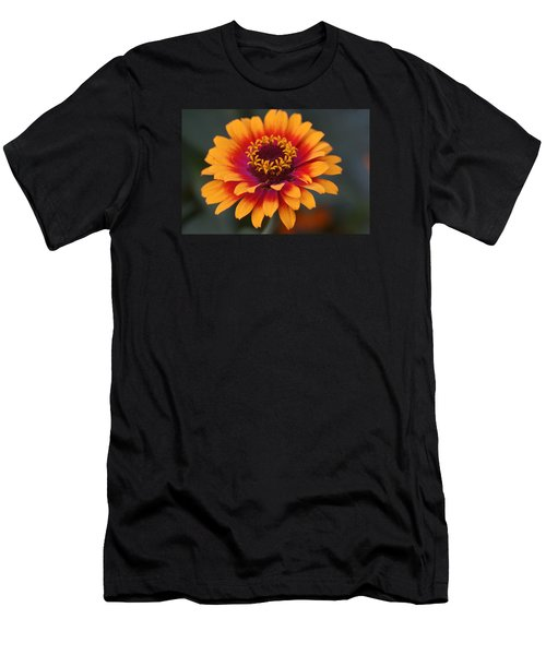 Colorful Zinnia 2 Men's T-Shirt (Athletic Fit)