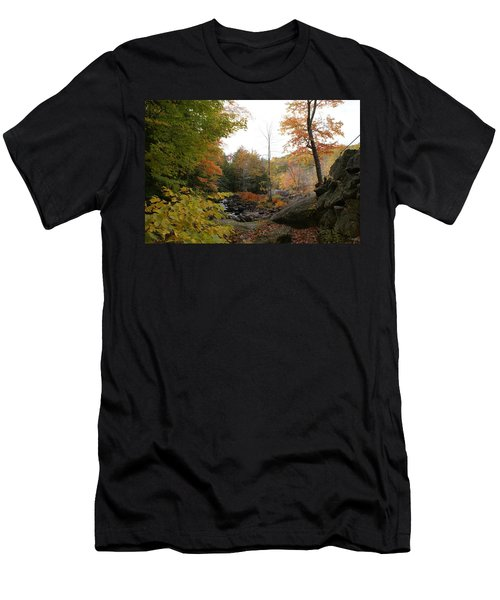 Colors Along The Stream Men's T-Shirt (Slim Fit) by Lois Lepisto