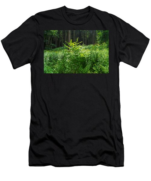 Colors Of A Forest In Vogelsberg Men's T-Shirt (Athletic Fit)