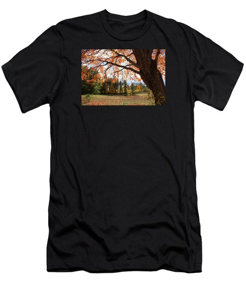 Colors Of Fall Men's T-Shirt (Slim Fit) by Lois Lepisto