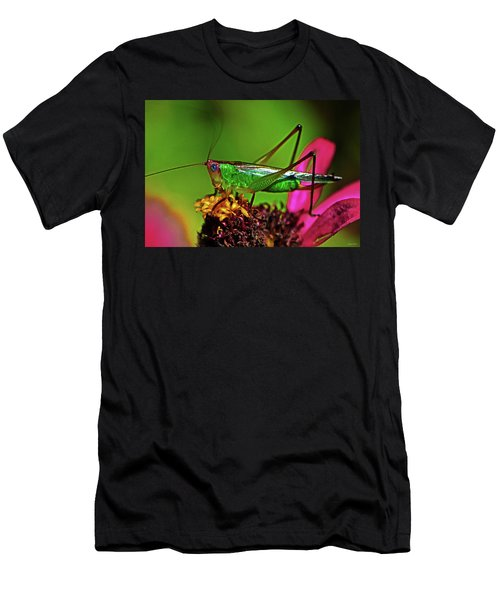 Men's T-Shirt (Slim Fit) featuring the photograph Colors Of Nature - Grasshopper On A Zinnia 001 by George Bostian