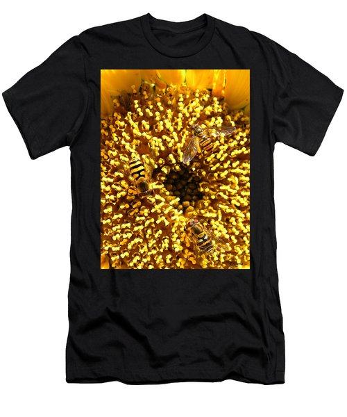 Colour Of Honey Men's T-Shirt (Athletic Fit)