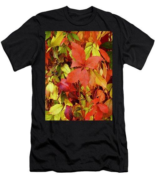 Colours Of Autumn Men's T-Shirt (Athletic Fit)