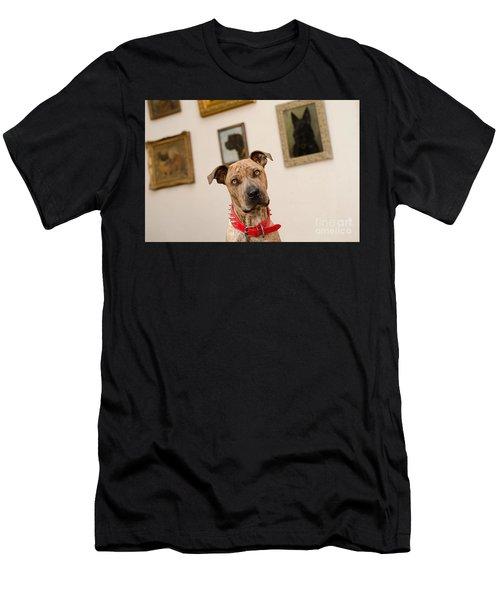 Commodor Men's T-Shirt (Athletic Fit)