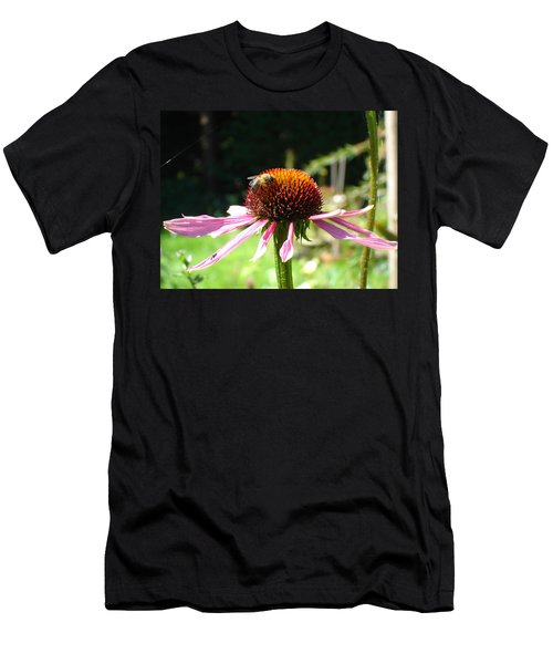 Cone Flower And Honey Bee Men's T-Shirt (Athletic Fit)