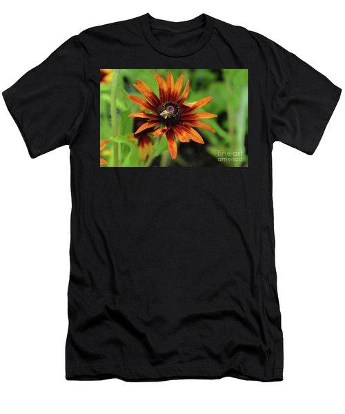 Cone Flower Men's T-Shirt (Slim Fit) by Eva Kaufman