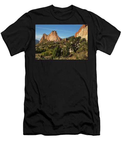 Coniferous Trees In The Garden Of The Gods Men's T-Shirt (Athletic Fit)