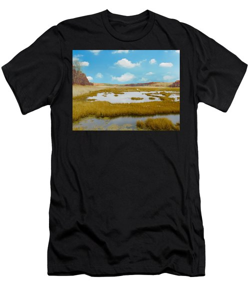 Connecticut Salt Water Marsh Men's T-Shirt (Athletic Fit)
