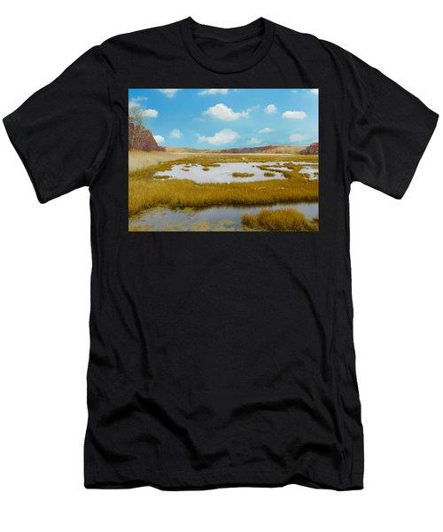 Connecticut Salt Water Marsh Men's T-Shirt (Athletic Fit)