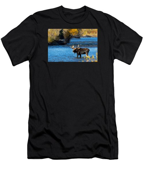 Cool Moose Men's T-Shirt (Athletic Fit)