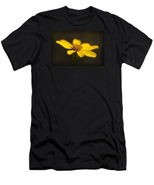Coreopsis Verticillata Men's T-Shirt (Athletic Fit)