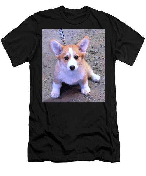 Corgi Puppy Men's T-Shirt (Athletic Fit)