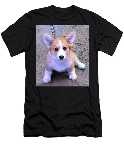 Corgi Puppy Men's T-Shirt (Athletic Fit)