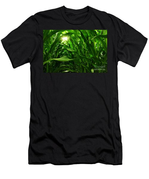 Corn Field Men's T-Shirt (Athletic Fit)