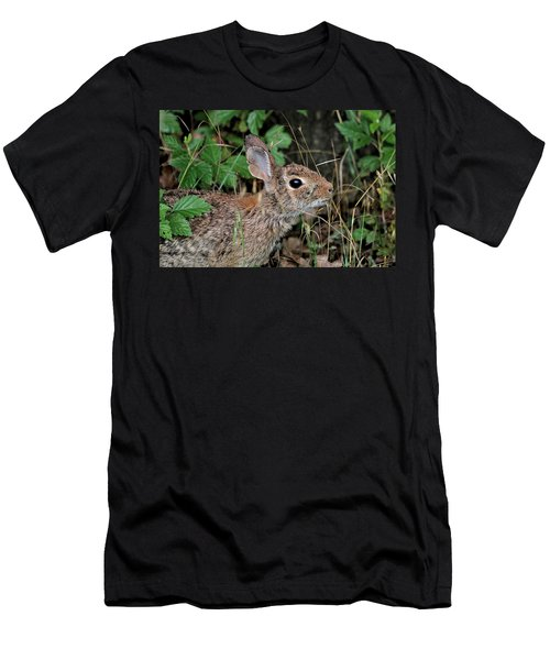 Men's T-Shirt (Athletic Fit) featuring the photograph Cottontail Bunny Breakfast by Sheila Brown
