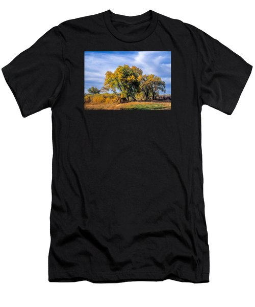 Cottonwood #1 Tree On Ranch Land In Colorado Fall Colors Men's T-Shirt (Slim Fit) by John Brink