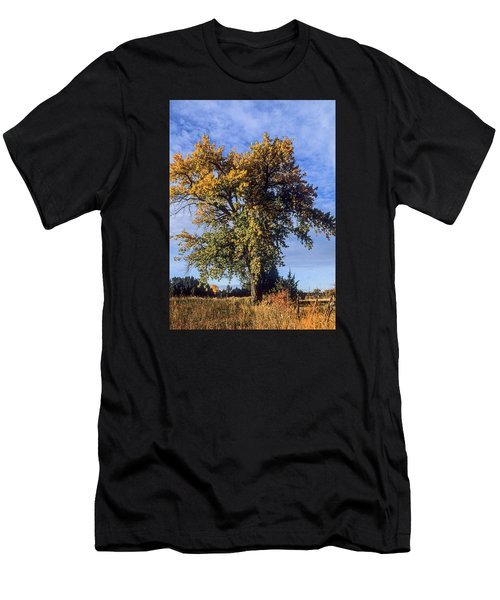 Cottonwood #3 Colorado Ranch Country In Fall Men's T-Shirt (Slim Fit) by John Brink