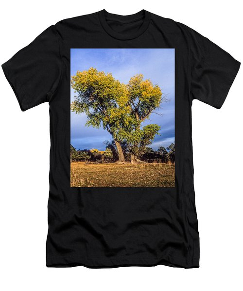 Cottonwood #4 Fall Ranch Colorado Men's T-Shirt (Athletic Fit)