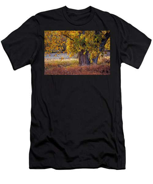 Cottonwood #6 Fountain Creek, Colorado In Fall Men's T-Shirt (Athletic Fit)