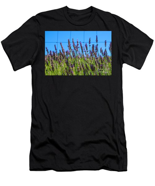 Country Lavender Vii Men's T-Shirt (Athletic Fit)