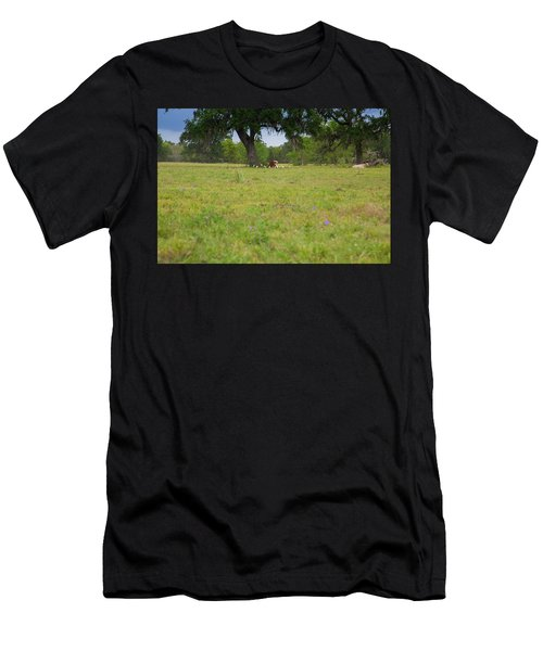 Cow Surrounded By Her Fans Men's T-Shirt (Athletic Fit)
