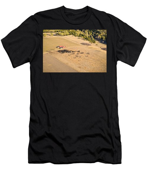 Cows And Trucks Men's T-Shirt (Athletic Fit)