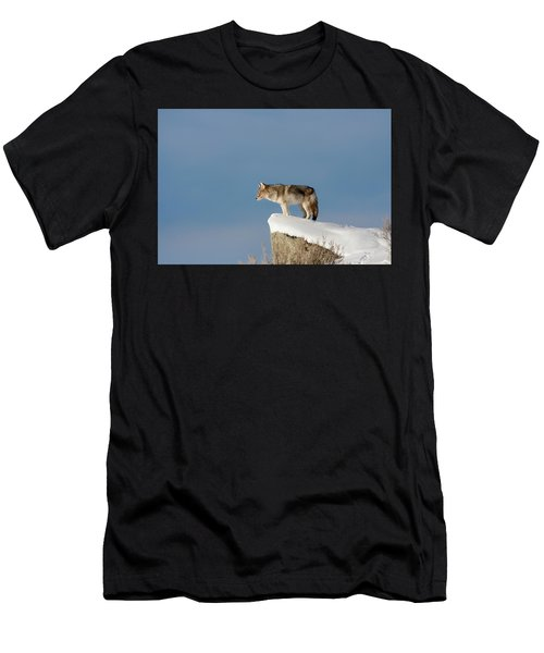 Coyote At Overlook Men's T-Shirt (Athletic Fit)