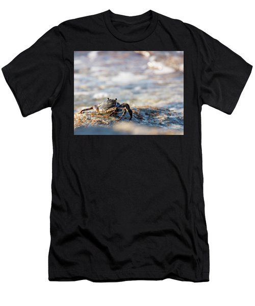 Crab Looking For Food Men's T-Shirt (Athletic Fit)