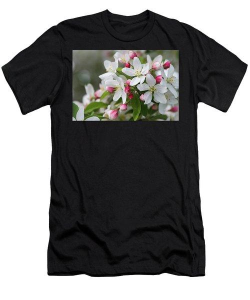 Crabapple Blossoms 12 - Men's T-Shirt (Athletic Fit)