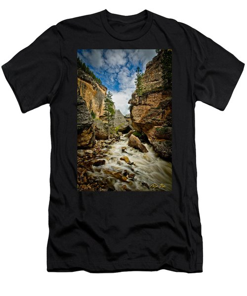 Crazy Woman Canyon Men's T-Shirt (Athletic Fit)