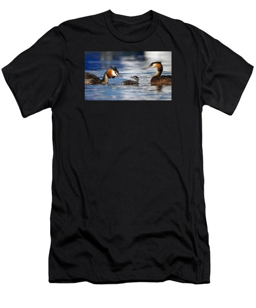 Crested Grebe, Podiceps Cristatus, Ducks Family Men's T-Shirt (Athletic Fit)