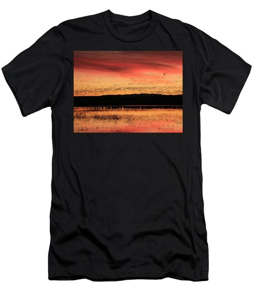 Crimson Sunset At Bosque Men's T-Shirt (Athletic Fit)