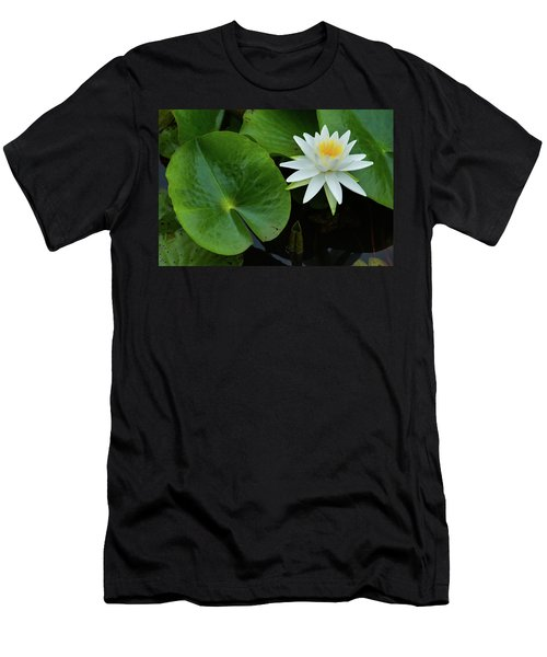 Crisp White And Yellow Lily Men's T-Shirt (Athletic Fit)
