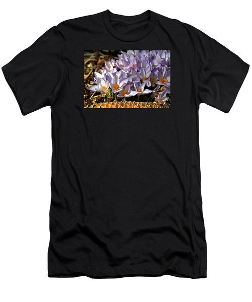 Crocuses Serenade Men's T-Shirt (Athletic Fit)