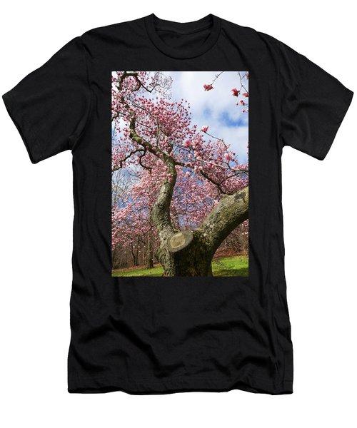 Crooked Magnolia Men's T-Shirt (Athletic Fit)
