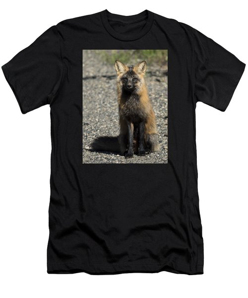 Cross-fox Wonder Men's T-Shirt (Athletic Fit)