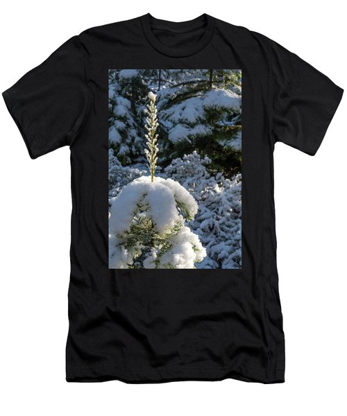 Crystal Tree Men's T-Shirt (Slim Fit) by Jan Davies