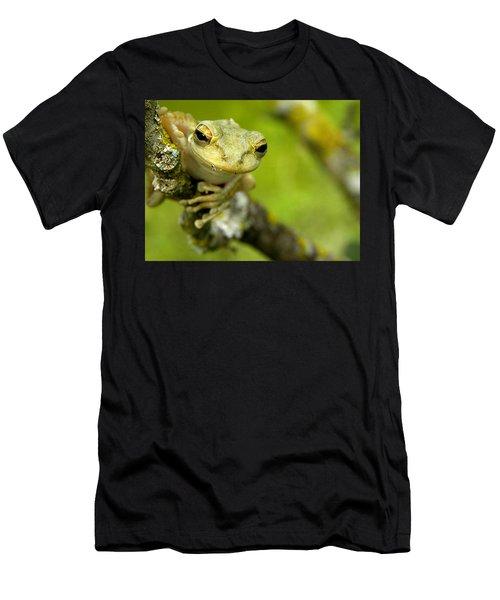 Cuban Tree Frog 000 Men's T-Shirt (Athletic Fit)