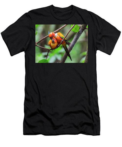 Men's T-Shirt (Athletic Fit) featuring the photograph Cuddling Parrots by Pradeep Raja Prints