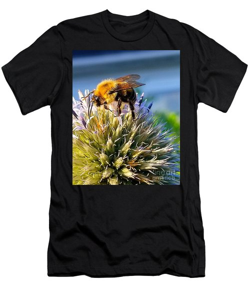 Curious Bee Men's T-Shirt (Athletic Fit)