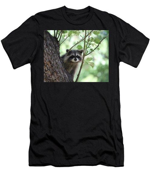 Curious But Cautious Men's T-Shirt (Athletic Fit)